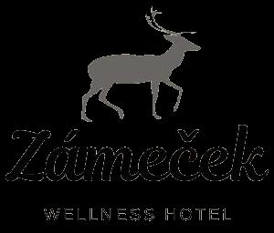 Wellness Hotel Zámeček